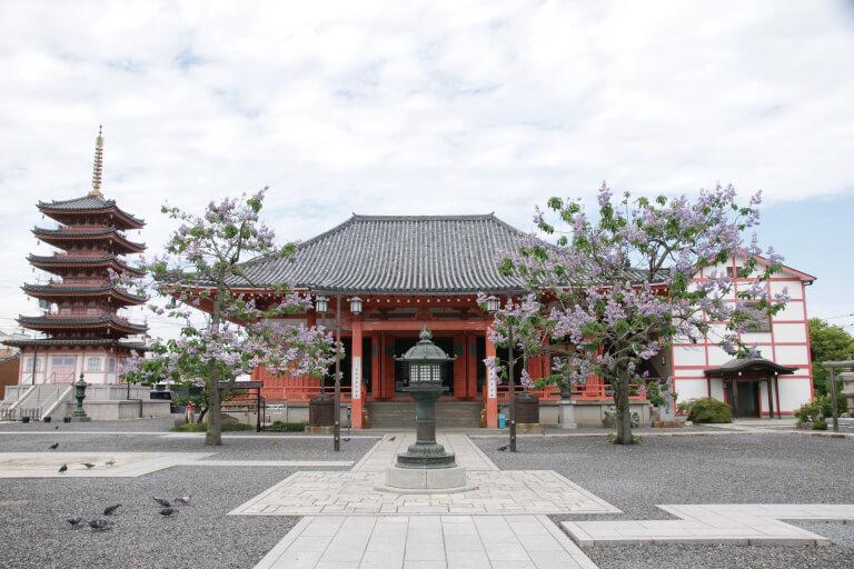 恵日山 観音寺(津観音)